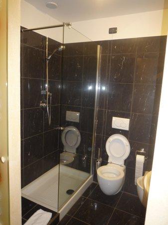 Hotel Royal Superga : la douche et wc