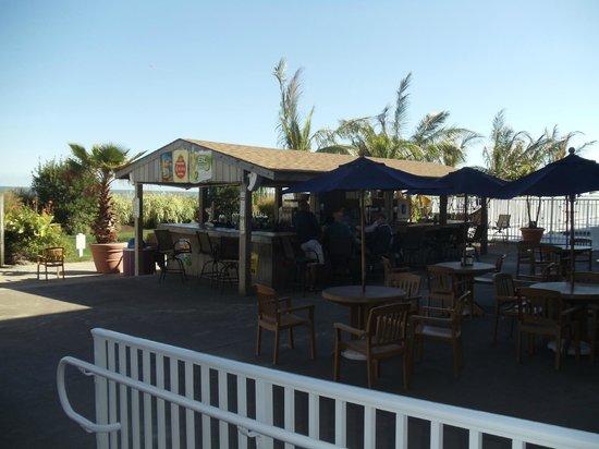 Carousel Resort Hotel & Condominiums : Beach Bar!