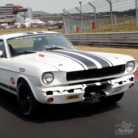 feel the roar of that v8 picture of classic american muscle rh tripadvisor co uk