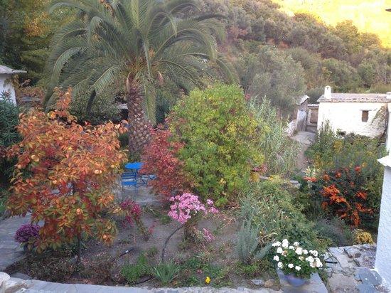 Sierra y Mar: garden terrace