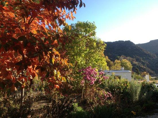 Sierra y Mar: view from garden terrace