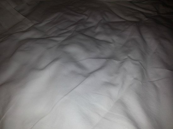 Anaheim Marriott: hair and wrinkled sheets close up