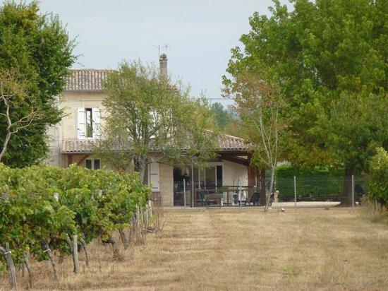 Château de La Prévôté : vue depuis le vignoble