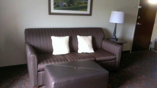 Hampton Inn & Suites Woodstock : Chocolate Livingroom