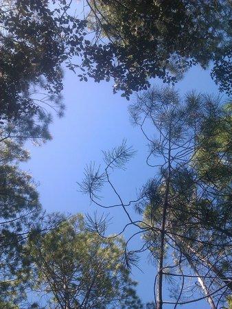 Cabanas Llano de los Conejos: El cielo sobre nuestras cabezas