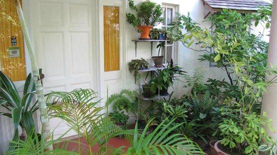 Villa Caribbean Dream: Eingang Haupthaus