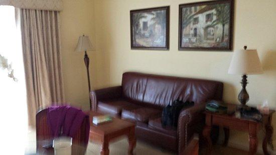 The Point Orlando Resort : Sofa in sitting area