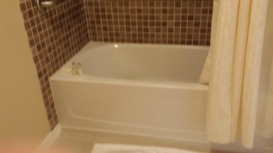 The Point Hotel & Suites: That too high bathtub