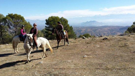 Sierra Pelada Horse Riding School : Views over Sierra Nevada