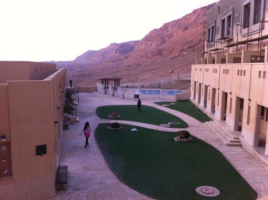 The Masada Hostel : Garden