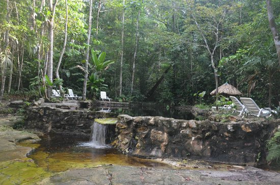 Amazon Ecopark Jungle Lodge: Piscina Natural