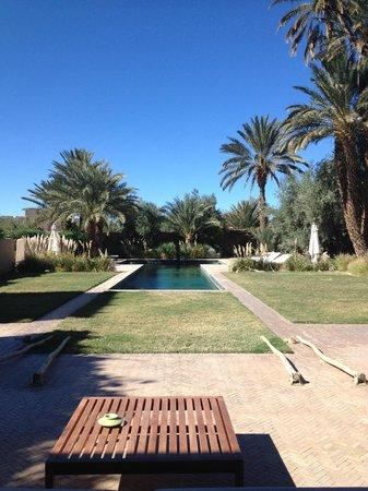 Dar Ahlam: Pool Area