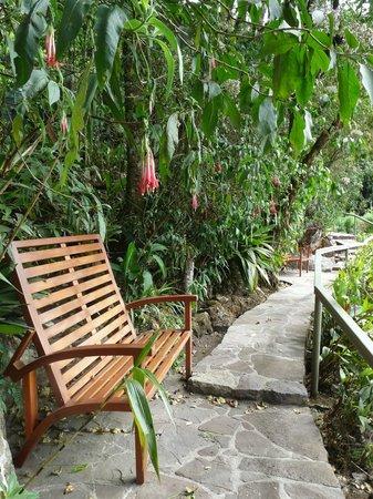 Belmond Sanctuary Lodge : promenade au-dessus de l'hôtel
