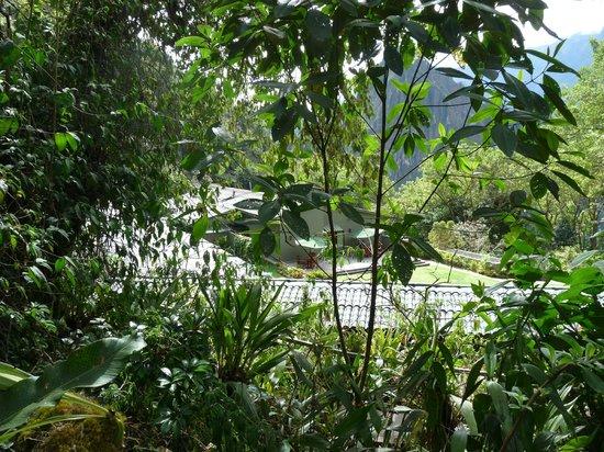 Belmond Sanctuary Lodge: Vue du bassin