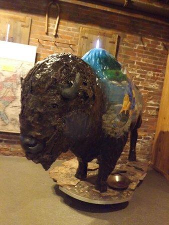 Pony Express Museum: buffalo