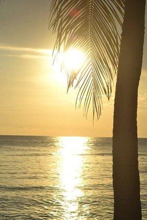 coucher de soleil au viva wyndham dominicus palace