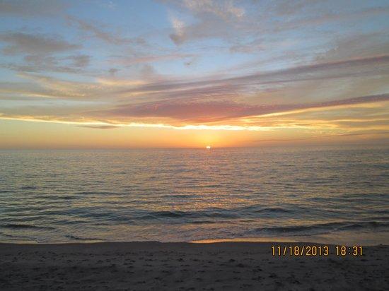 Pearl Beach Inn : beach view