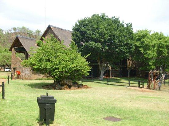 Bakubung Bush Lodge: Lodge compound