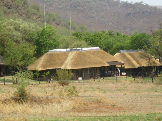 Bakubung Bush Lodge : View of the rooms