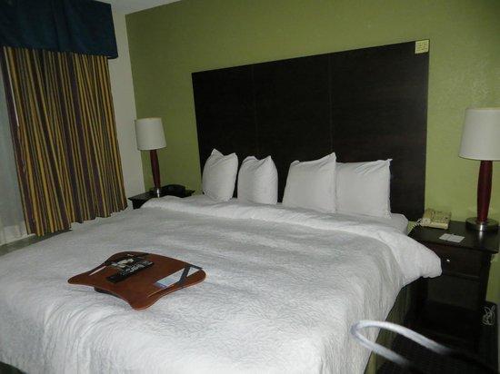 Hampton Inn and Suites Los Angeles - Anaheim - Garden Grove: King bed