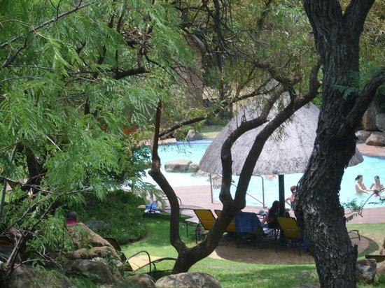 Bakubung Bush Lodge: Pool area