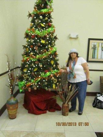 La Quinta Inn & Suites Lancaster: Lobby Halloween tree