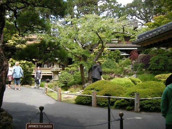 Interesting japanese tea garden giardini curati japanese - Giardini curati ...
