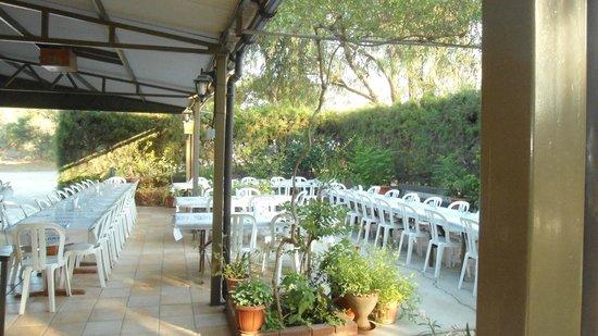 Galini Restaurant: ΟΜΟΡΦΟ ΠΕΡΙΒΑΛΛΟΝ