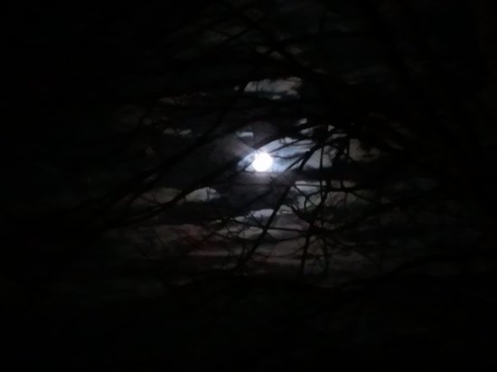 Huber's Inn Port Townsend: Night sky in Port Townsend