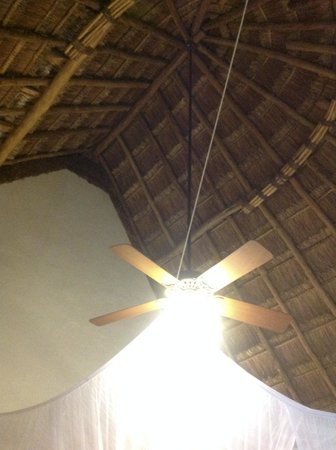 The Lodge at Uxmal : Thatch roof