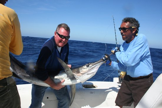 Pisces Sportfishing: Strippy