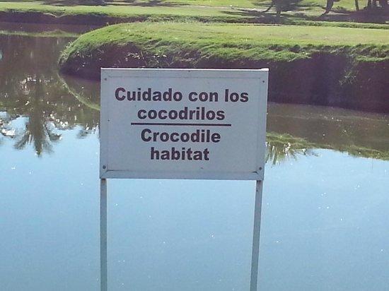Now Amber Puerto Vallarta: Marina Golf Course
