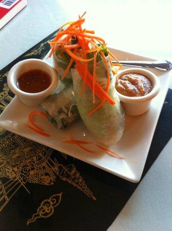 Thai Bistro: Excellent Spring Rolls; best part of my meal