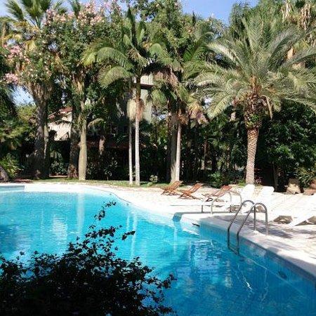 B&B La Villa : 緑に囲まれた庭園プール