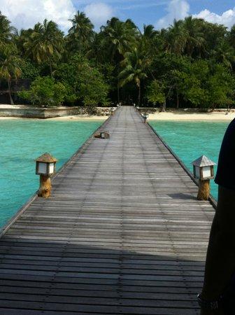 Palm Beach Resort & Spa Maldives : Plage côté piscine