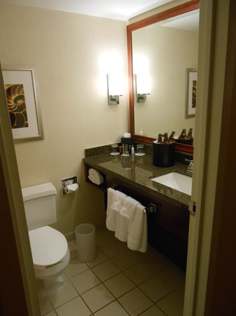 Hampton Inn West Palm Beach Central Airport: Room 208