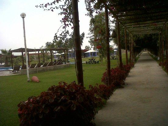 La Estancia Chincha : Vista interna el Hotel desde la recepción / zona de piscina