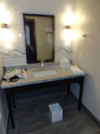Kent State University Hotel & Conference Center: Presidential Suite Bathroom