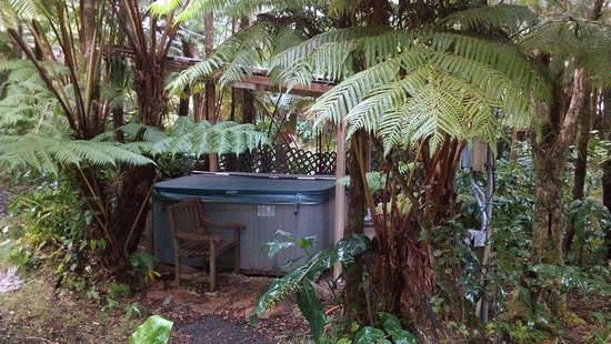 Aloha Crater Lodge: Hot Tub