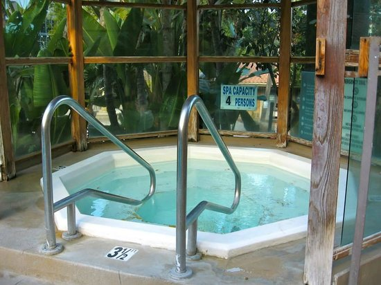 Catalina Canyon Resort & Spa: Jacuzzi in pool area