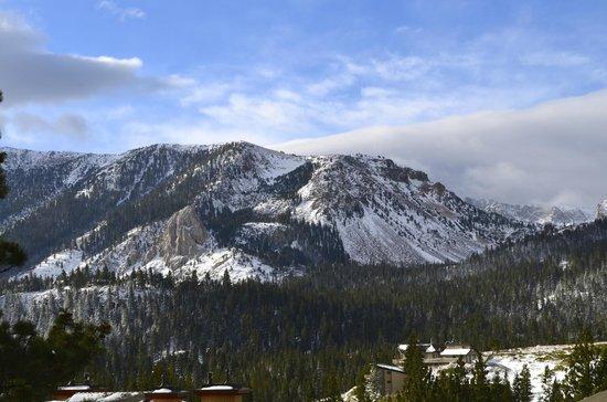 Juniper Springs Resort : beautiful views