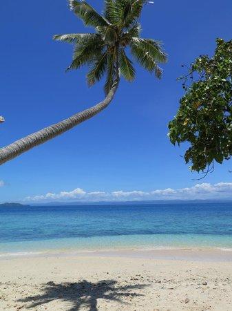 Royal Davui Island Resort: View of the beach