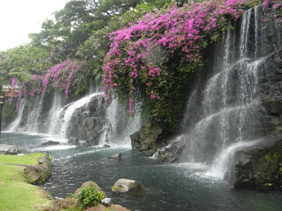 Grand Wailea - A Waldorf Astoria Resort: Waterfalls near the drive in the lobby area.