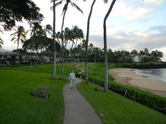 Wailea Elua Village : View of Elua and beach