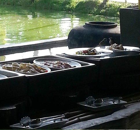 AKA Resort & Spa: The local birds getting a free breakfast