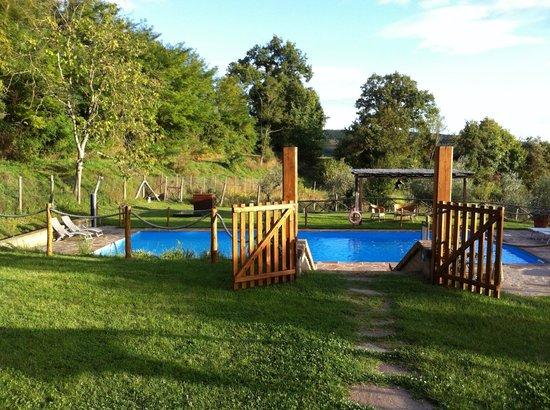 Antica Olivaia: The pool!