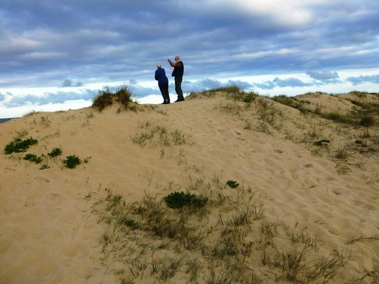 BIG4 Moruya Heads Easts Dolphin Beach Holiday Park: viewing the ocean from top of the sand dunes