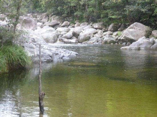 Daintree Tours : Mossman Gorge