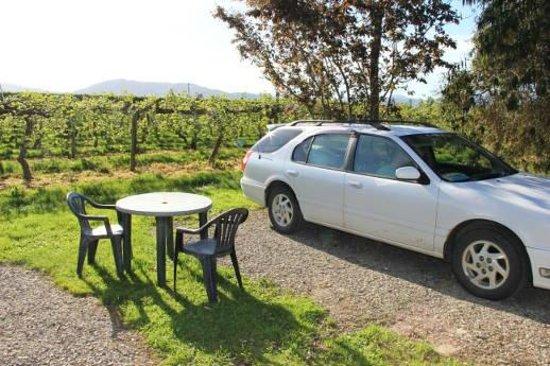 Vineyard Tourist Units: Stellplatz