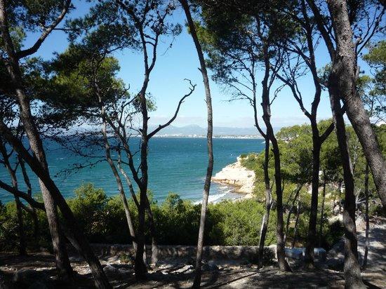 Best Cap Salou: Вид на бухту и большой пляж.